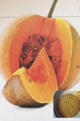 Red Pumpkin Parantha
